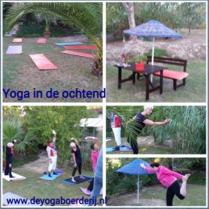 yoga in tuin