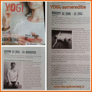 yogi zomereditie