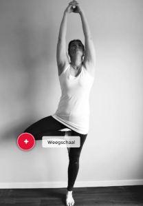 weegschaal in yogi
